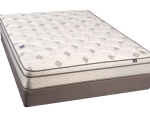 Eclipse Chiropractors Care 4000 Euro Pillow Top
