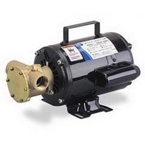 Jabsco Pump 6050-0003-M08