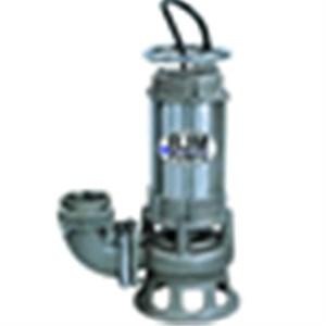 BJM SKX150CSS-460V Pump