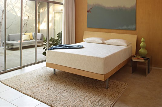 TEMPUR-Pedic Cloud Collection