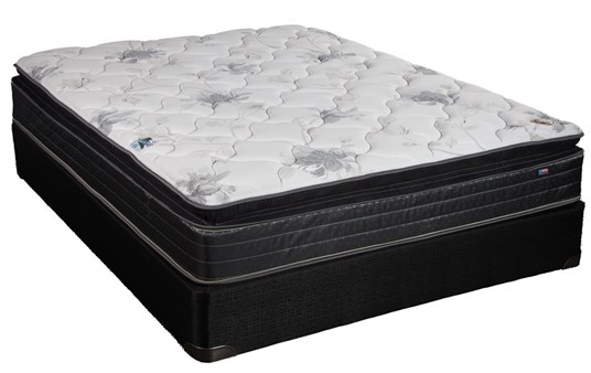 Eclipse Chiropractors Care 5000 Euro Pillow Top Mattress